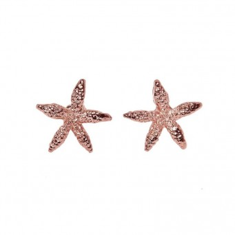 Earrings AF4194-Rose Gold- plated